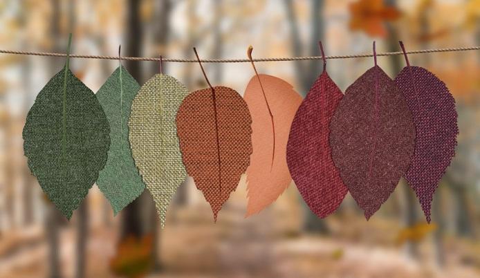 sexologue-orleans-feuilles-couleurs
