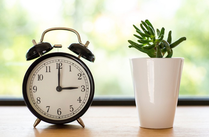sexologue-orleans-horloge-cactus